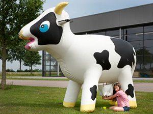 vache-zygomagique